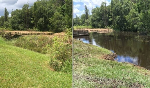 pond maintenance companies in Lutz FL