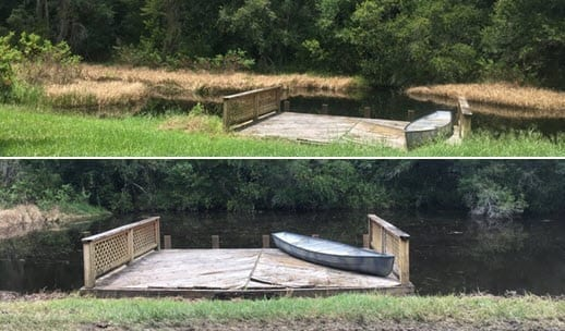 pond weed removal service