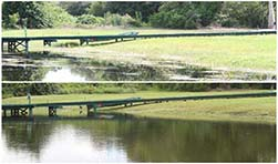 Retention Pond Maintenance Services