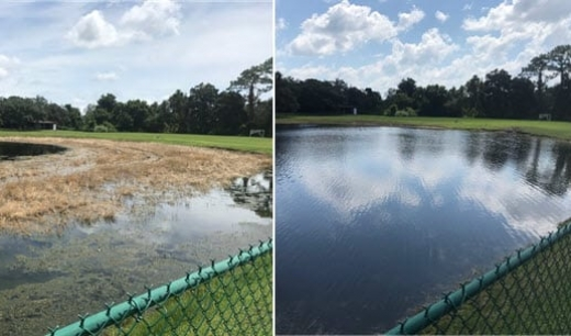 lake weed removal