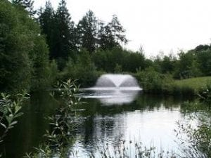 Fountains for large ponds Lake