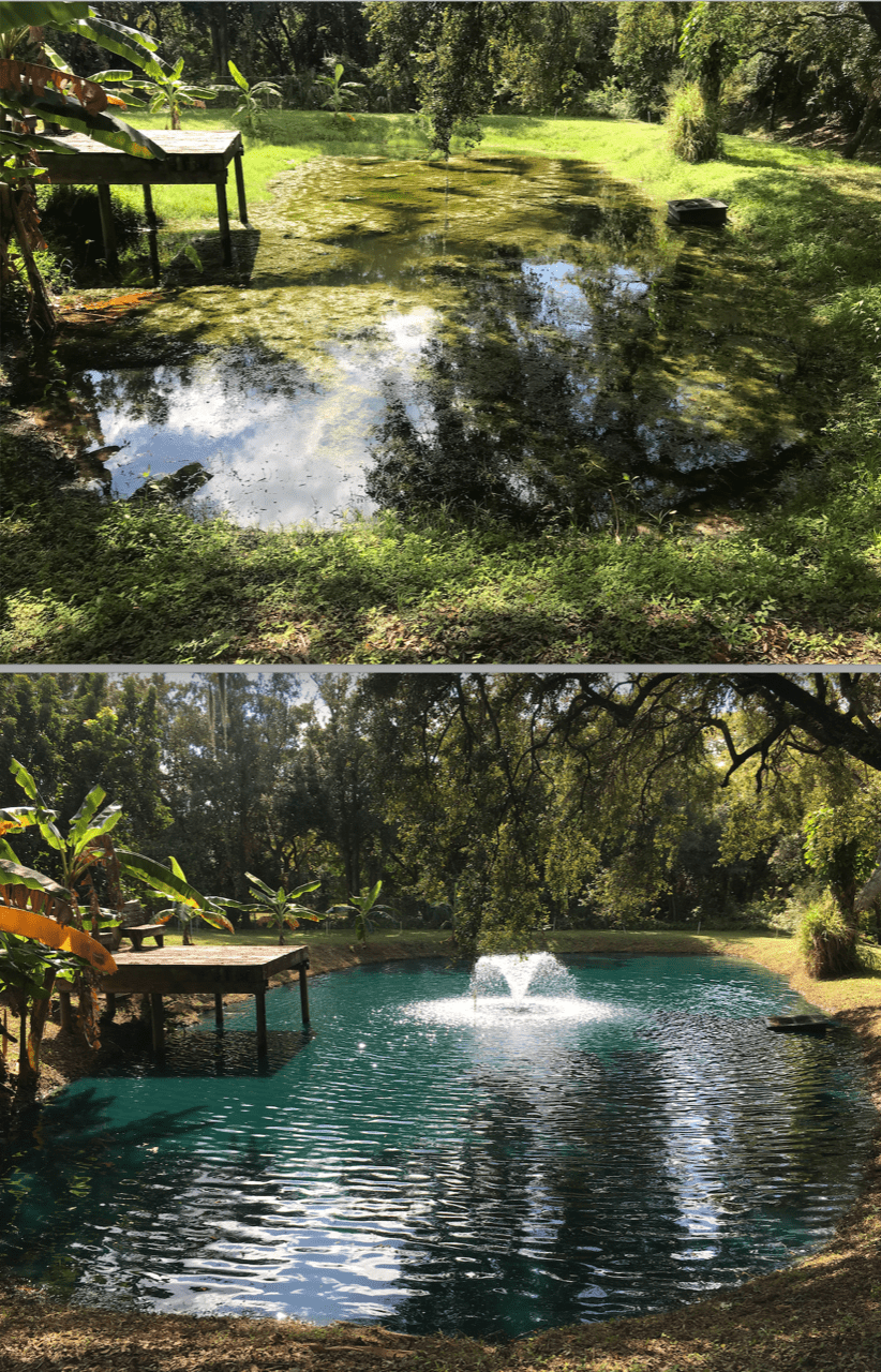 pond fountain maintenance service company in land o lakes fl