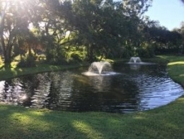 lake pond fountains for sale in orlando fl
