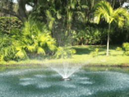 tampa pond fountains for sale